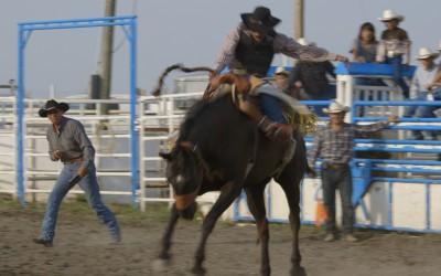 Piikani Horseback
