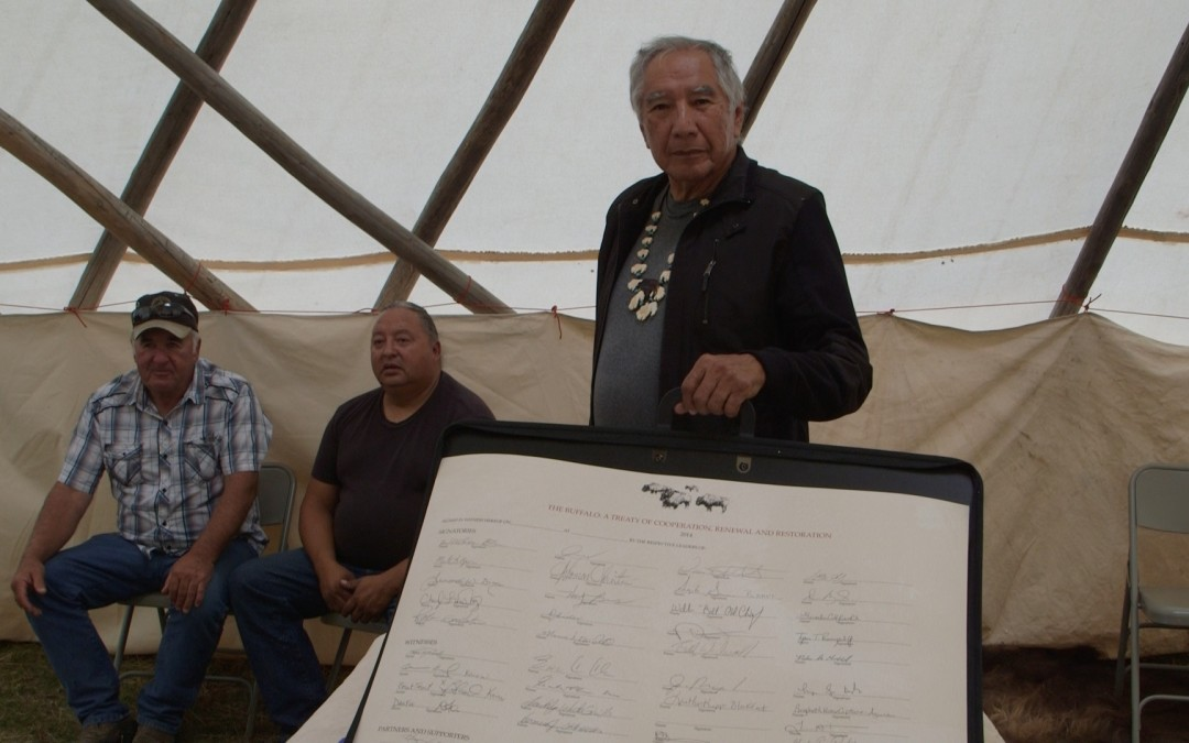 Leroy Littlebear showing the Buffalo Treaty